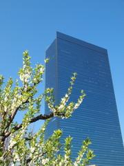 クリスタルタワーと桃の花