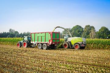 Maishaecksler in Aktion mit Erntewagen undTraktor