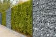 Leinwandbild Motiv Zaun mit Hecke, Gambionen und Steine