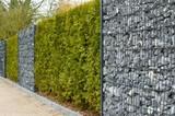 Zaun mit Hecke, Gambionen und Steine