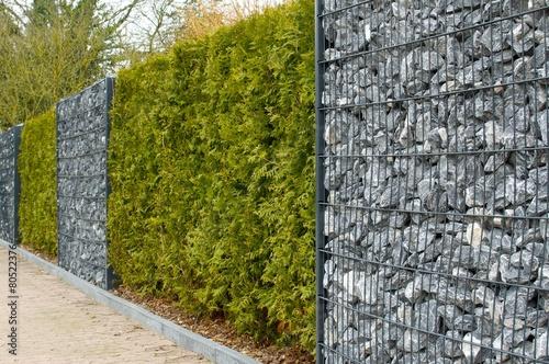 Zaun mit Hecke, Gambionen und Steine - 80522376