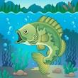 Freshwater fish topic image 1