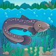 Freshwater fish topic image 2