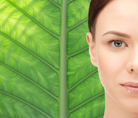 young woman face over green leaf background