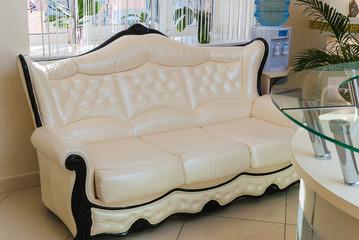 Modern ivory sofa in sunny waiting room interior