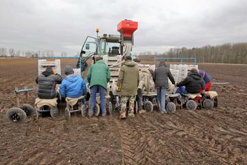 LandwirtKartoffelPolnischeErntehelfer