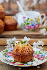 Apple muffins and spring blooming flowers