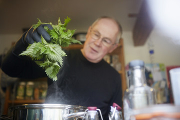 A man holding fresh foraged nettles with a gloved hand, blanching them in a pot.