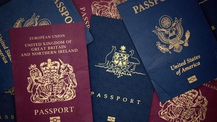 Passport. 3D. Assorted passports Landscape
