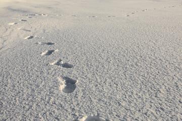 Human footsteps on snow