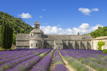 Famous Abbey of Senanque