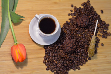 cup of hot coffee with a fresh tulip, coffee beans, sugar stick