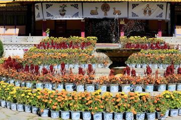 Takten Mingyur Phodrang-palace. Norbulingka-Lhasa-Tibet. 1262