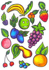 Fruits and berries - drawing pens.