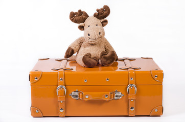alce di peluche seduto su valigia