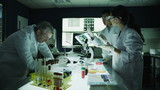 Medical research team working together in a laboratory