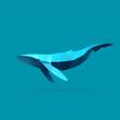 whale - 80553592