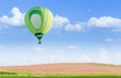 Hot air balloon over pink cosmos fields with blue sky background - 80553799
