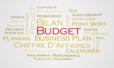 Nuage de mots Budget