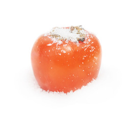 The persimmon lies on snow