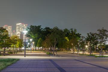 豊洲公園の夜景
