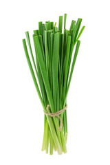 A bunch of fresh Chinese chives
