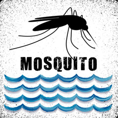 Mosquito, standing water, graphic illustration