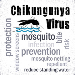 Chikungunya Virus, Mosquito standing water prevention word cloud