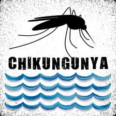 Mosquito, standing water, Chikungunya virus text