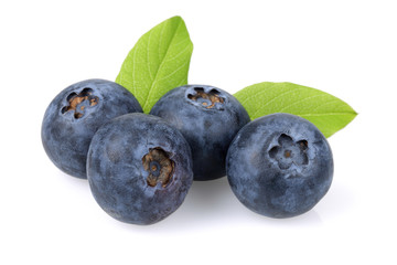 Fresh Blueberry group