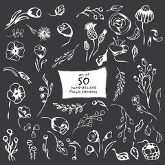 Set of 50 hand- sketched floral elements on a dark background