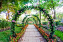 "Постер, картина, фотообои ""beautiful flower arches with walkway in ornamental plants garden"""