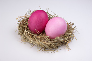 two easter pink egg on bird nest isolated