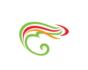 Cameleon (chameleon) Colours
