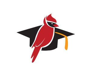 Cardinal Bird Education