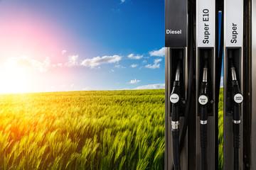 bio benzin billig tanken
