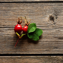 Rose hip over old wooden background