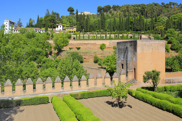 Alhambra garden in Granada, Andalusia, Spain