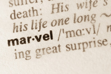 Dictionary definition of word marvel