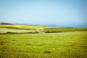 The road not taken. Country landscape, Cornwall, England.