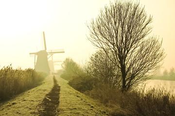 Traditional Dutch windmills at dawn in Kinderdijk, Netherlands.
