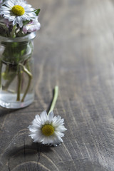 daisy flower in glass jar