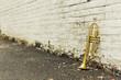 Old Trumpet Brick Wall - 80598119