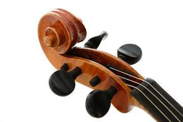 Violine Schnecke