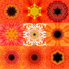 Collection of Nine Orange Concentric Flower Mandala Kaleidoscope