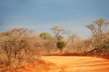 Piste ocre au Kenya