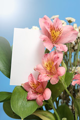 beautiful bouquet of lilies,  card against  blue sky and sun.