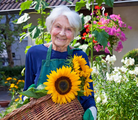 Elderly Woman Carrying Basket with Sunflowers.