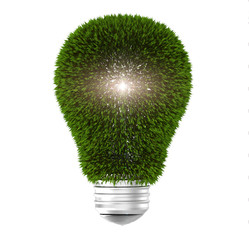 Light bulb with green leaves