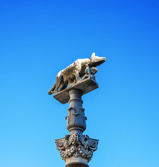 Capitoline Wolf view in Siena, Tuscany, Italy